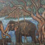【スリランカ旅行準備】行く前に知っておきたい注意点と対策やおすすめ(読者からのQ&A)