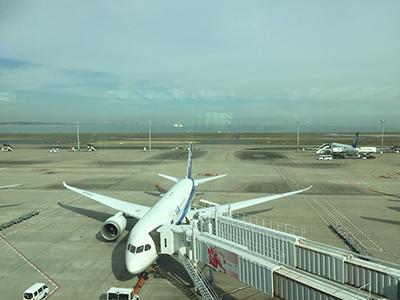 【アミーチデルテ羽田空港第2ターミナルビル】飛行機が見えるレストラン!