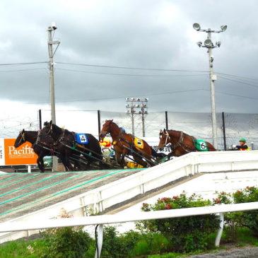 【北海道観光】漫画「銀の匙」でも有名な帯広ばんえい競馬完全ガイド
